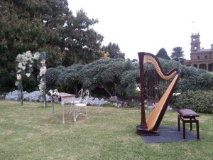 harp love2