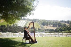 harp love4
